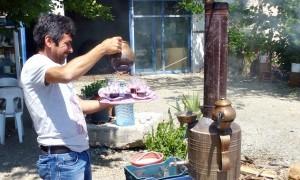 Teegarten bei Kemer, Türkei